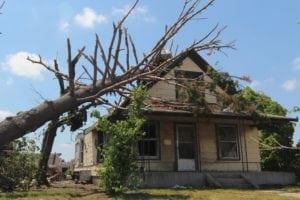 tree damage roof repair